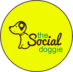 The Social Doggie